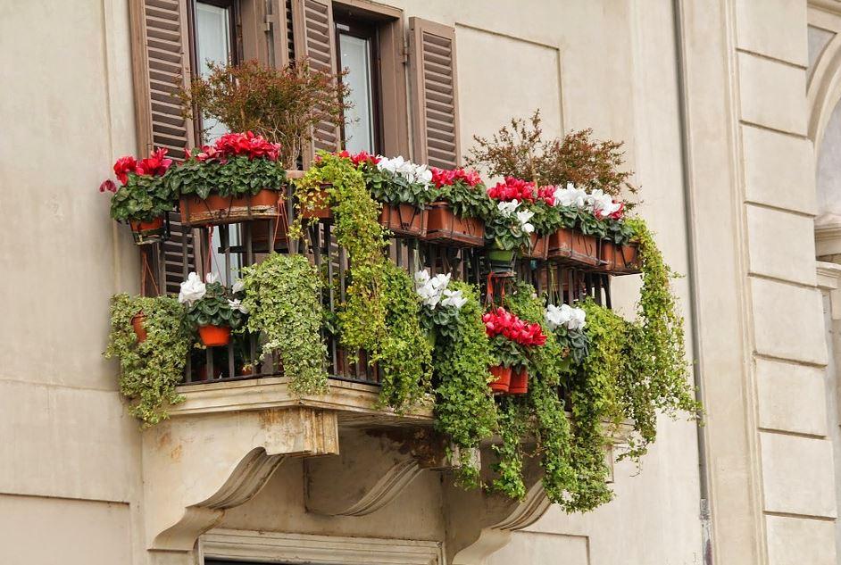 Grădina din balcon – micul paradis al locuinței